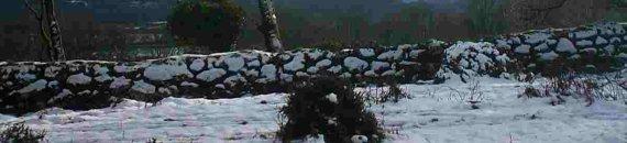 Moczary Dartmoor